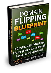 Domain Flipping Blueprint cover